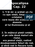 Apoca_22
