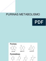 Metabolismo.de.Purinas.857553965