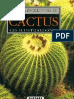 Pequeña Enciclopedia de Cactus