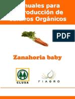 2003. FIAGRO. Manual de Producción de Zanahoria Baby Orgánica