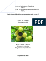 2008. CENTA. Guía Técnica del Cultivo de Tempate