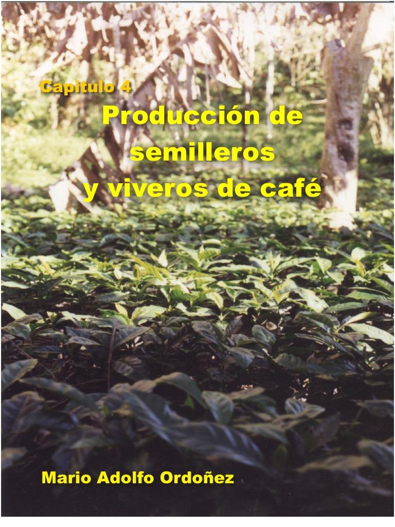 Gu a t cnica de producci n de semilleros y viveros de caf for Produccion de viveros