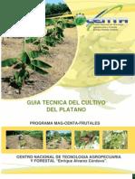 2011. CENTA. Guía Técnica del Cultivo de Plátano
