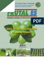 2002. IICA. Guía Técnica del Cultivo de Limón Pérsico