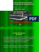 4ta Clase de Truchas-Infraestructura