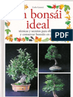 Gejw Un Bonsai Ideal