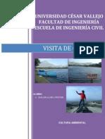 Informe de Cultura Ambiental - Conache
