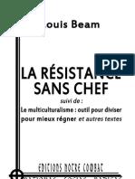Beam Louis, Résistance, Multiculturalisme et autres