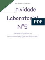Actividade Laboratorial Nº5