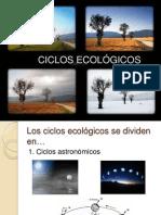 Ciclos ecológicos
