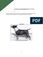 Bull Terrier Estandar