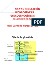 Glucolisis Gluconeogenesis Glucogenogenesis Glucogenogenolisis Junio 2012