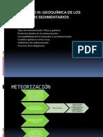 Xi. Geoquimica Procesos Sedimentarios
