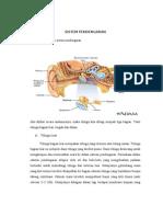 Sistem Pendengaran