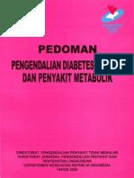 pedoman diabetes depkes 2010