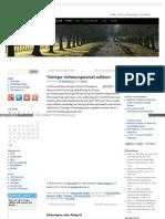 Thüringer Verfassungsschutz auflösen - www_frankcebulla_info_2011
