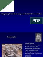 Evaporação do Licor Negro na Indústria de Celulose