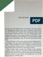 Heidegger Feldweg 2