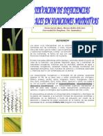 Nutricion Mineral (2)
