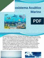 Ecosistema Acuático Marino
