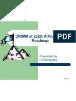 CRIMM at 2020 Rev1