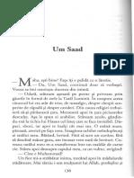 Fadia Faqir - Stalpi de sare 3