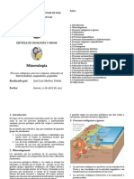 Medina Toledo Jose Luis (Mineralogénesis