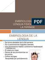 Embriologia de La Lengua Fisiologia de La Faringe