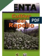 2003. CENTA. Guía Técnica del Cultivo de Repollo