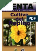 2003. CENTA. Guía Técnica del Cultivo de Pepino