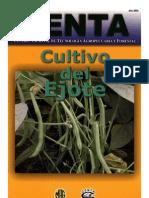 2003. CENTA. Guía Técnica del Cultivo de Ejote