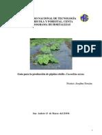 2006. CENTA. Guía Técnica del Cultivo de Pipian Criollo