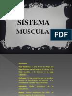 Sistema Muscular y Cavidades Corporales