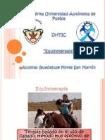 Equinoterapia DHTIC