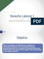 Capsula Derecho Laboral 4.1