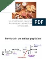 Dicroismo circular protein as para bajar de peso