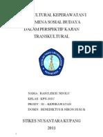 Fenomena Sosial Budaya Dalam Perspektif Kajian Transkultural (Lexy)