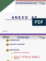 Presentacion Anexo Ae