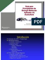 Biomolec Princip.