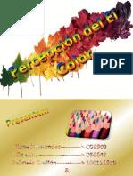 percepciondelcolor-110630092155-phpapp01