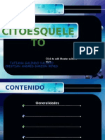 CITOESQUELETO MODIFICADO