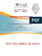 Test Del Arbol de Karl Koch
