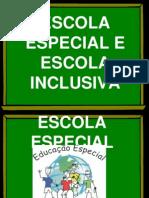 ESCOLA ESPECIAL E ESCOLA INCLUSIVA