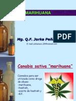 Tox de Laucinogenos