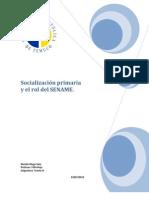 Socialización primaria  y el programa de familias de acogida