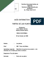 Las Plantas Modificado