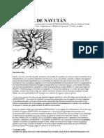 El Arbol de Navutan i