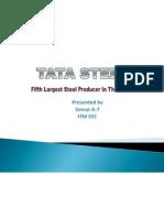 Ma Project on Tata Steel
