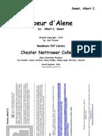 Net CoeurDAlene