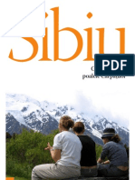 Sibiu - capitala culturala